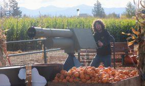 Tacoma Pumpkins