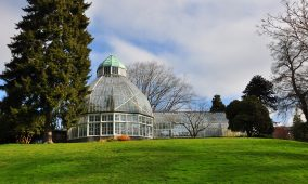 Things to do in Tacoma Wright Park Seymour Conservatory